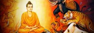 meditation-enlightenment